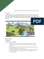Copia de Ecología