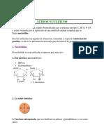 6.ACIDOS NUCLEICOS