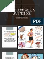 Homeostasis y sus tipos.pptx