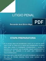 PRESENTACIÓN LITIGIO PENAL