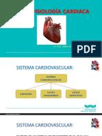 Morfofisiologia_Cardiaca
