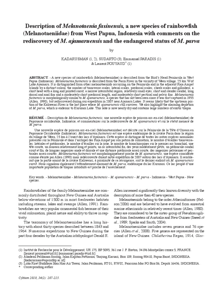 Papua Indonesia With Comments On The Rediscovery Of M Ajamaruensis 101 Ikan Hias Air And Endangered Status Parva New Guinea Anatomical Terms Location