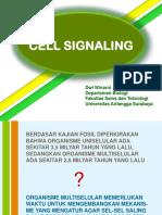 12. sinyal sel biosel 2016.pptx
