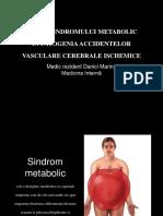 Danici Marina -Sdr Metabolic-AVC.ppt
