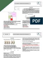 PROVA DE BOLSA 2020 ESAESPCEX - GABARITO.pdf