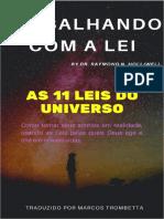 AS 11 LEIS DO UNIVERSO - RAYMOND HOLLIWEEL