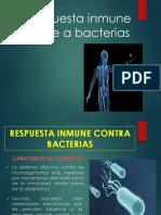 Respuesta inmune frente a bacterias