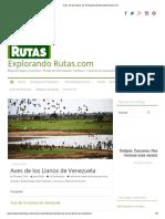 Aves de los Llanos de Venezuela _ Explorando Rutas.com