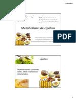 Metabolismo-de-Lipídios-Thaisa.pdf