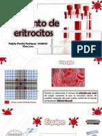 recuento de eritrocitos diapositiva