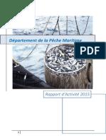 rapport-d-activite-2015-version-finale.docx