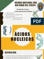 Ácidos_Nucleicos_BioQui_2[1].pptx