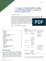 Autres Coques à Gram Positif Catalase Négative d'Intérêt Médical Aerococcus, Leuconostoc, Pediococcus