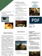 triptico   DEL ROMANTICISMO LITERARIO .V.pdf