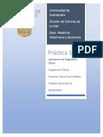 consigna2 Vladimir Bucio García.pdf