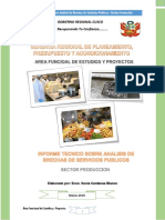 INFORME TECNICO SOBRE ANALISI DE BRECHAS SECTOR PRODUCCION-