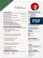 CV D 2