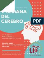 """""""Cerebro"""""""