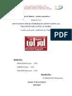 Rapport Action Associative ENCG Oujda