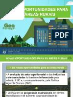 As_novas_oportunidades_para_as_áreas_rurais.ppt
