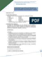Resumen Ejecutivo-oki.doc