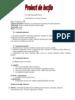 latina - schema - proiect  lectie