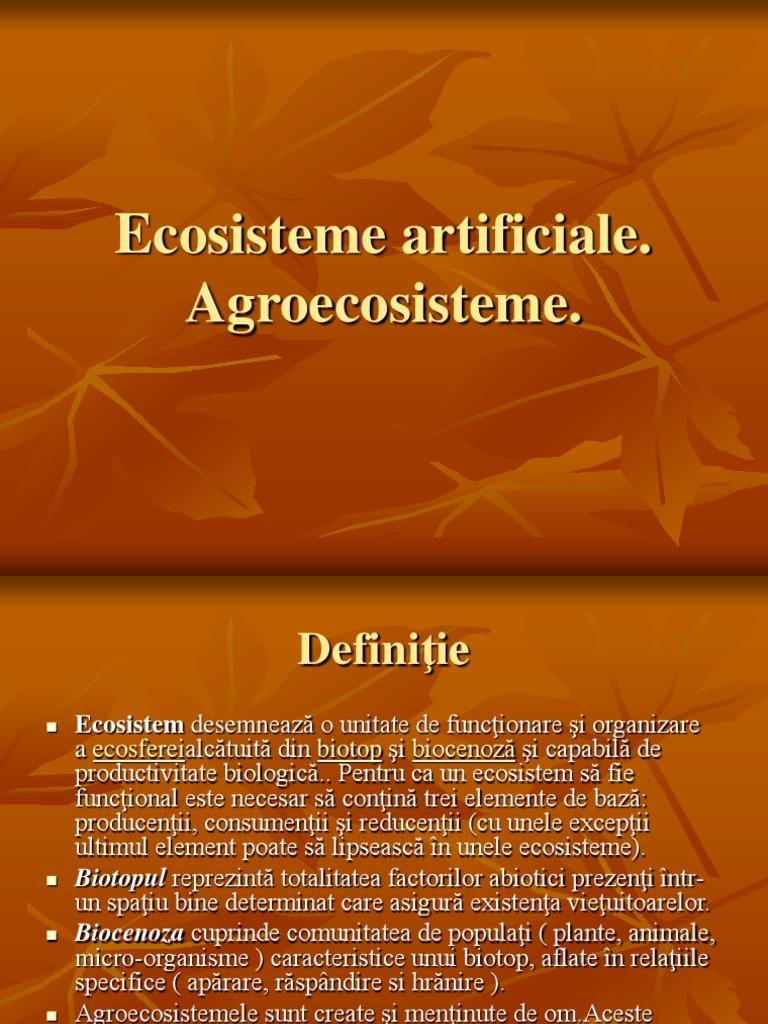 Ecosisteme artificiale