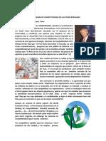1 Los Problemas de Competitividad de Las Pymes Peruanas