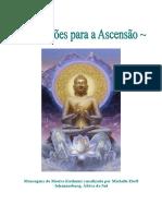 ManualdeAtivaesparaaAscenso2008.doc