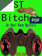 Un Misterio de Abel Kane 01 Perras Perdidas book