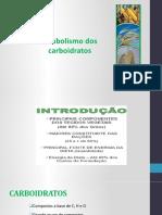 Metabolismo dos carboidratos.pptx