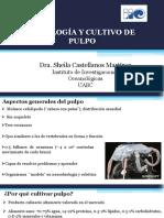 5abril-T3-P2Fisiologia_y_cultivo_de_pulpo-Sheila_Castellanos