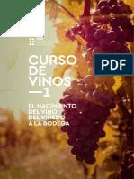BV_curso_vinos_1.pdf