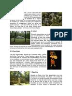 15 PATRIMONIOS ARQUEOLOGICOS