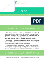 NÚCLEO.pptx