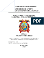 7072995-Proyecto-de-Tesis-Anemia-Ferropenica.doc