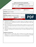 guia_04_escalas_wechsler_de_inteligencia.docx
