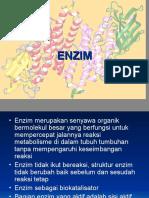 pertemuan 7 (enzim)