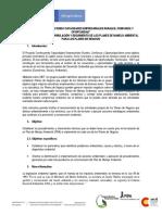 Instructivo Plan de Manejo Ambiental