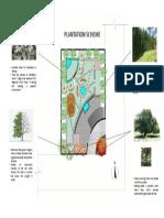 plantation scheme time problem.pdf