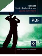 2010.06 ISPU-IBRAHIM Radicalization Report