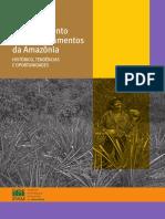 Desmatamento-nos-Assentamentos-da-Amazônia.pdf