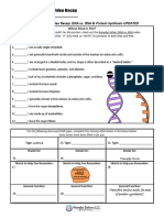 dna_vs_rna_and_protein_synthesis_updated_recap_by_amoeba_sisters