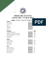 Brazilian-Jiujitsu-Curriculum-Adult