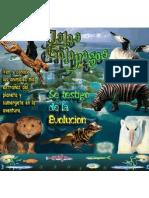 Galapagos island