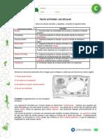 articles-26583_recurso_pauta_docx