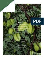 Antibacterial-Activity-of-Star-Fruit-Group-7-Pasteur (6)