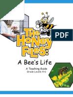 Honey Files Web