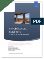 trabajo de concreto patologia