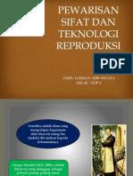 Pewarisan Sifat Dan Teknologi Reproduksi Tugas Tik